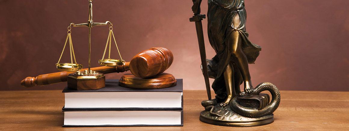 Praxiswissen Recht